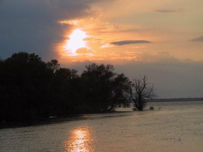 Finesse - Delta Dunarii